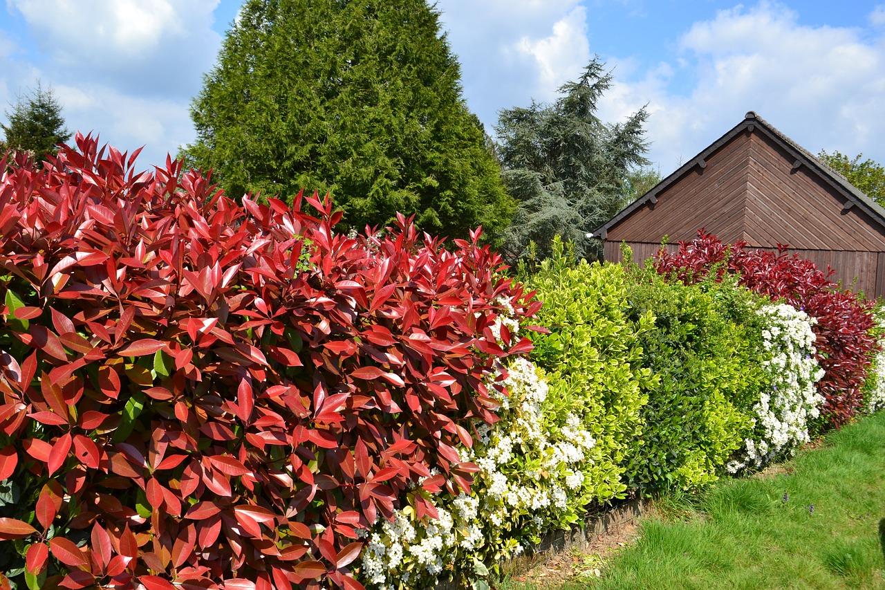Délimiter votre espace extérieur avec une clôture et une ...